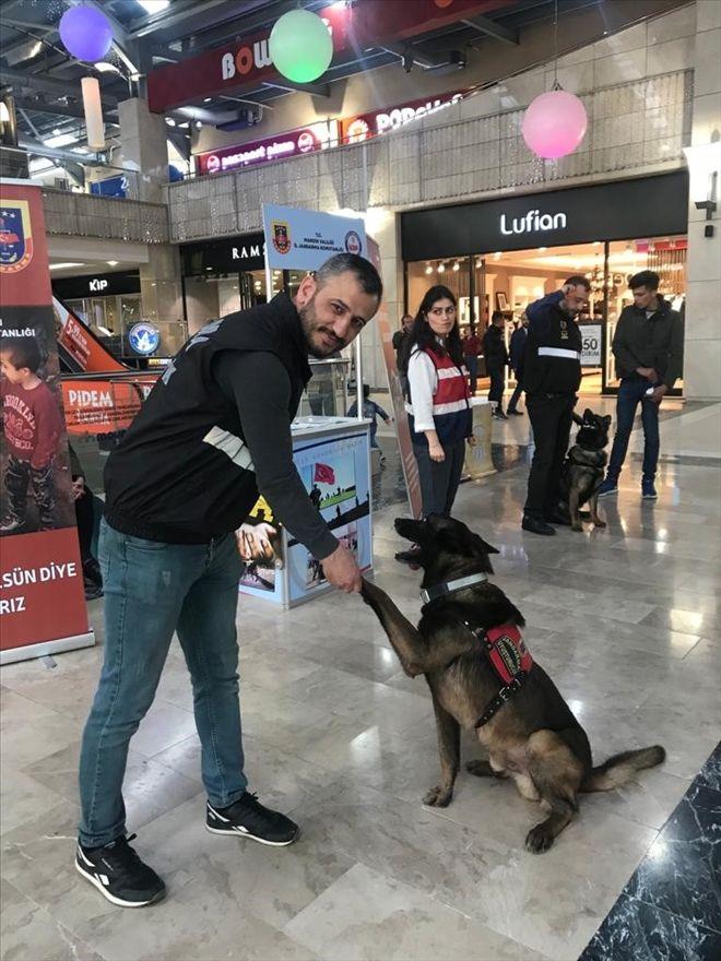 Jandarma, Narkotik Köpekleri ile gösteri yaptı