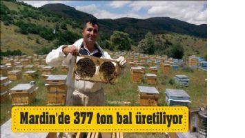 Mardin´de 377 ton bal üretiliyor