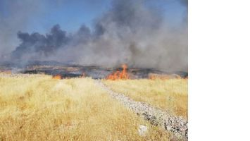 Çöp Toplama Aracında Yangın Çıktı